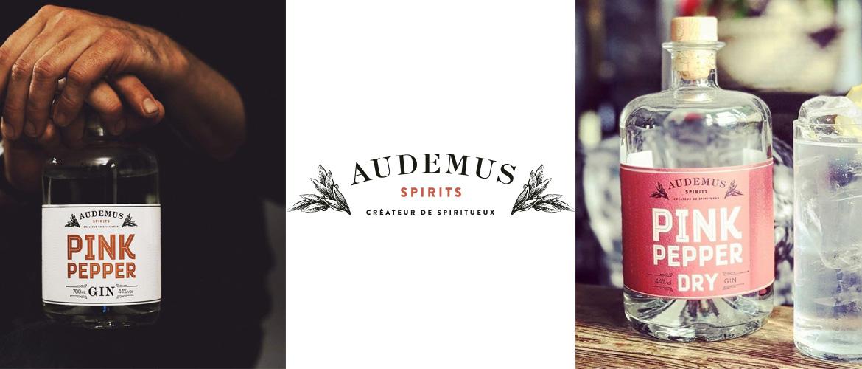 Audemus