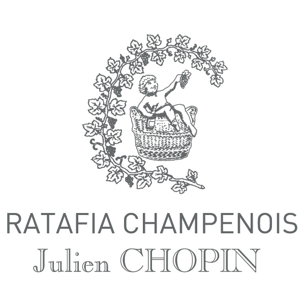 Julien Chopin