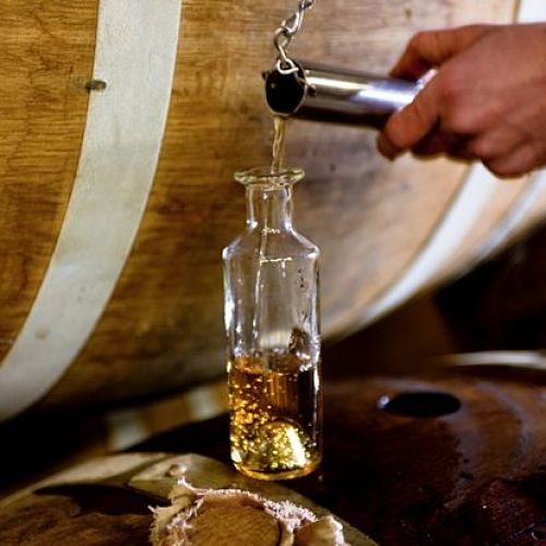 La diversité du cognac (session du lundi)