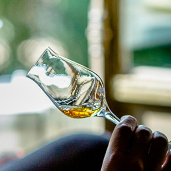 La Spirit Valley, future place forte du whisky de France