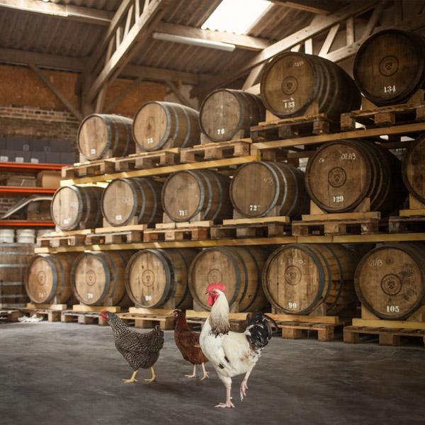 Les fermes-distilleries